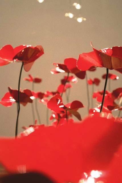 Tra arte e design fiori di latta delicate sculture di for Sculture di fiori
