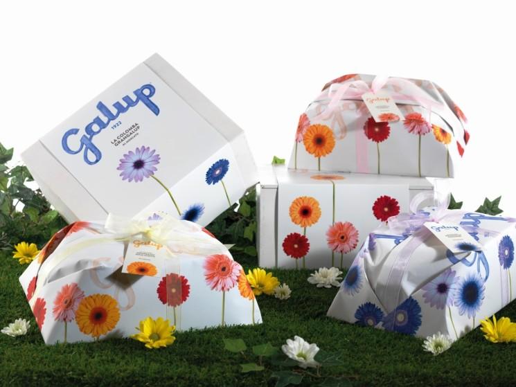 Novità Galup: a Pasqua le colombe della Flower Edition