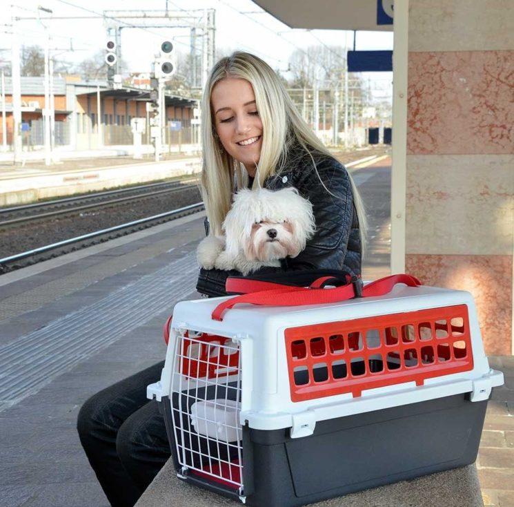 In viaggio con Atlas Trendy di Ferplast, il trasportino per gatti e cani di piccola taglia