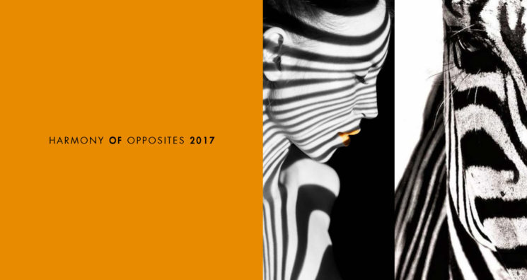 "Il nuovo calendario MAP 2017 ""Harmony of opposites"" in Limited Edition"