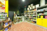Guida Magica Italia, growshop presenti in otto città italiane su dieci