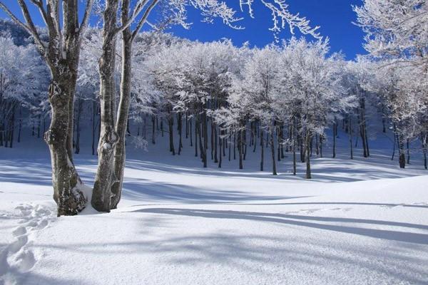L'inverno nella natura dei Parchi di Destinazione Turistica Emilia