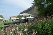FIORInellaROCCA, mostra mercato di piante rare alla Rocca di Lonato del Garda