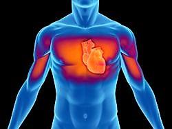 Conoscere e curare il cuore