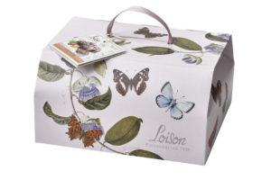 Da Loison a Pasqua volano le farfalle