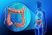 Tumore del colon retto: lo screening salva la vita