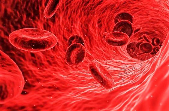 Rare malattie del sangue