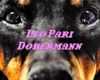 """Dobermann"", nuovo singolo di Leo Pari disponibile in digitale"
