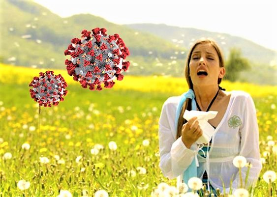 Le allergie e Covid-19