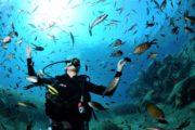 8 giugno Giornata Mondiale degli Oceani