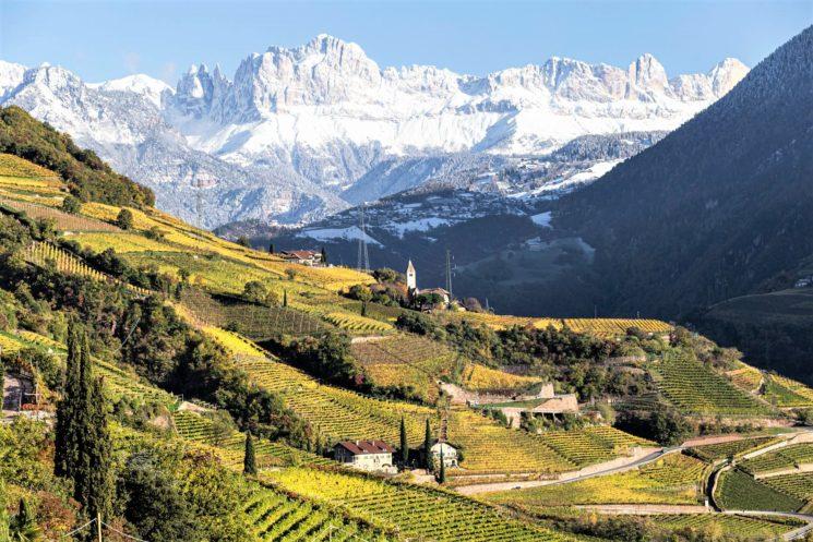 Consorzio Vini Alto Adige: parte da Milano il roadshow