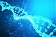 La nuova Oncologia e il SSN