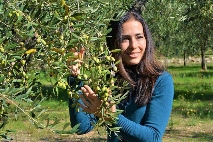 L'olio extravergine di oliva Cuonzo, un farmaco della natura pugliese