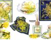 8 marzo: dedicato a tutte le donne il foulard e il profumo