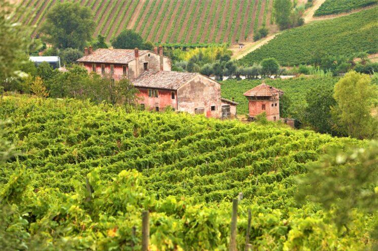 Oltre 5,7 milioni di € i contributi per la promozione dei vini