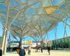 ArtVerona 2021, dialogo fra collezionisti, artisti e opere