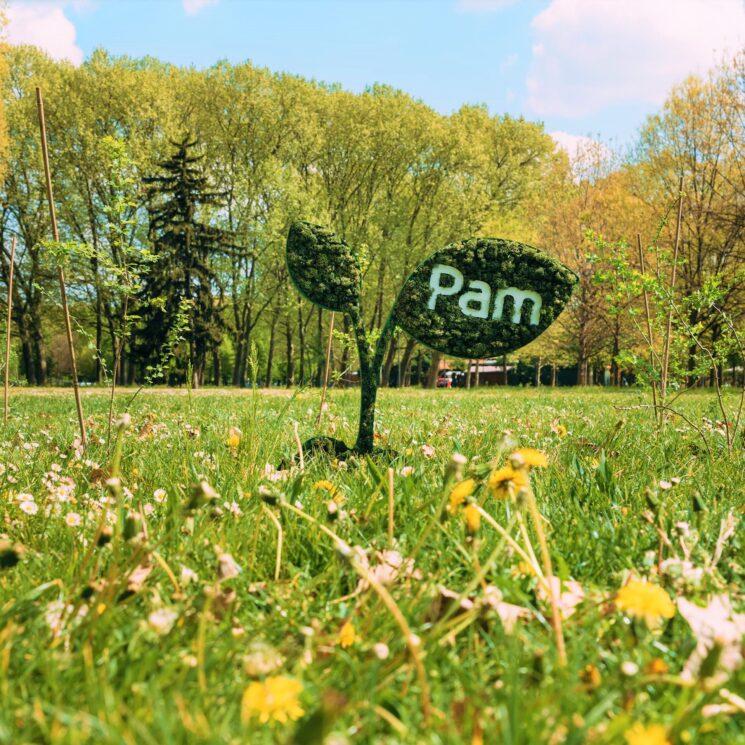 Pam Panorama, la sostenibilità risorsa per il futuro