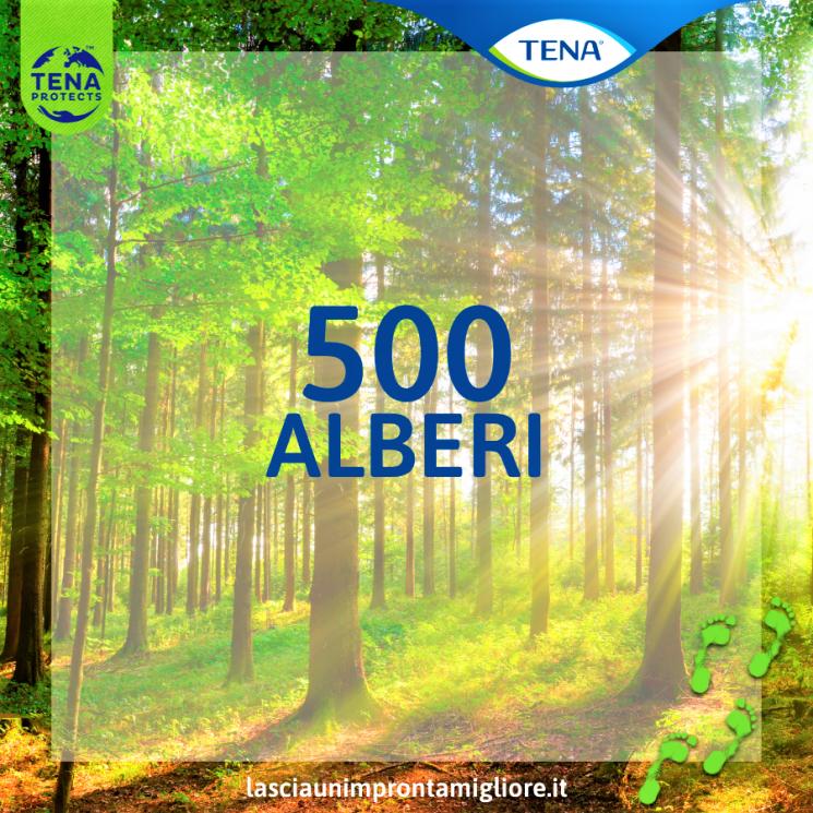 I quiz e i consigli di TENA per uno stile di vita sostenibile